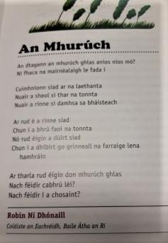 Le fáil san fharraige!